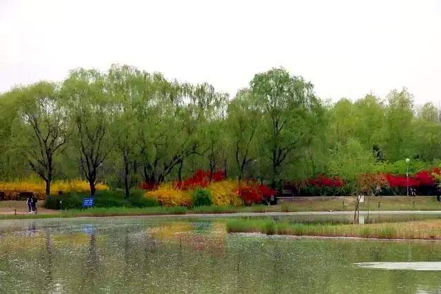 置身于风景优美的奥林匹克森林公园中,走进书画频道美术馆,中国